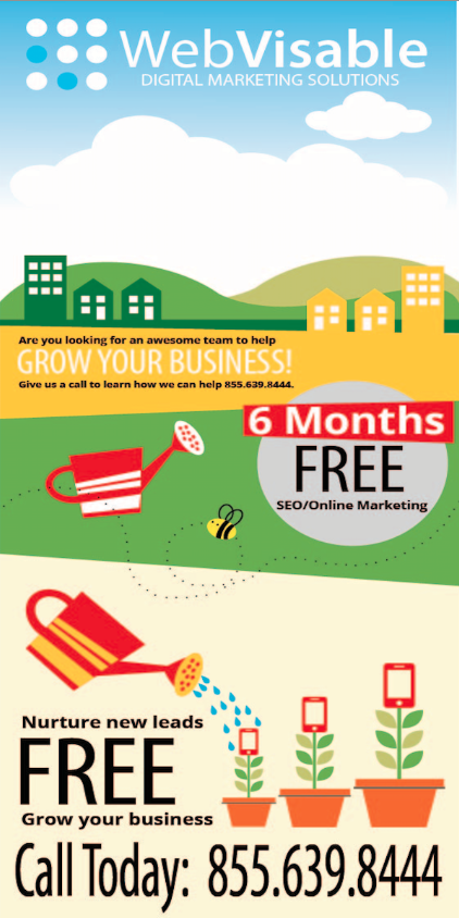 6 months free seo company promotional flyer