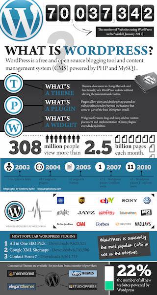 Wordpress Website Top Designs IN OC - Call 855.639.8444
