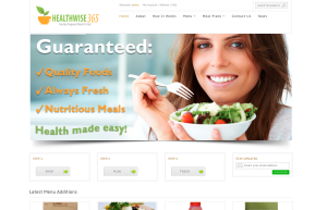 healthwise365 webvisable website design client