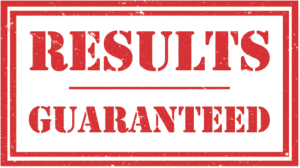 webvisable-seo-services-orange-county-results-guaranteed