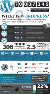 webvisable-seo-company-website-design-wordpress-stats